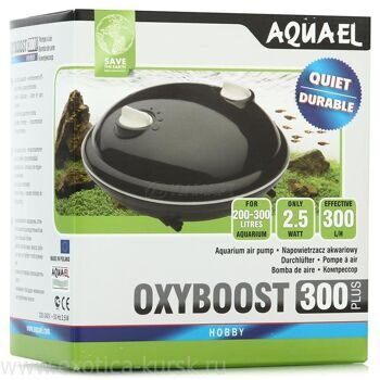 Компрессор OXYBOOST 300 plus (200-300л)